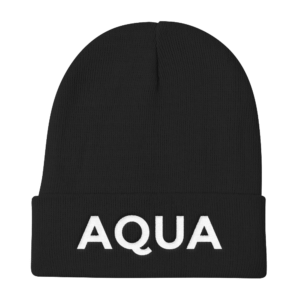 Aquarius Beanie No Glyph